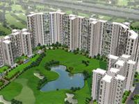 Jaypee Kalypso Court - Sector 128, Noida