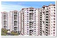 2 Bedroom Flat for rent in Eros Wembley Estate, Sector-50, Gurgaon