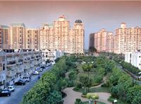 3 Bedroom House for rent in DLF Exclusive Floors, DLF City Phase V, Gurgaon