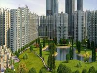 1 Bedroom Flat for sale in Pareena, Sohna Road area, Gurgaon