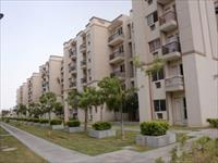 3 Bedroom Flat for sale in SARE Green ParC-II, Sector-92, Gurgaon
