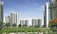 Maxblis White House - Sector 75, Noida