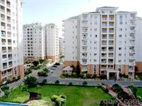 1 Bedroom Flat for rent in Goel Ganga Nebula, Viman Nagar, Pune