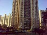 DLF Regency Park II - DLF City Phase IV, Gurgaon