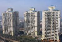DLF Belvedere Towers - Belvedere Tower, Gurgaon