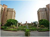 3 Bedroom Flat for rent in DLF Oakwood Estate, DLF City Phase II, Gurgaon