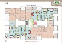Morning Glory-Floor Plan
