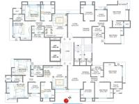 Daisy Juy Floor Plan