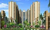 Today Canary Greens - Sector-73, Gurgaon