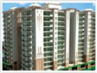 3 Bedroom Flat for rent in Charmwood Village, Faridabad