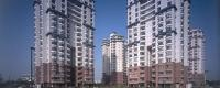 3 Bedroom Flat for rent in Unitech The Palms, South City I, Gurgaon
