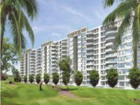 4 Bedroom Flat for rent in Ambience Caitriona, NH-8, Gurgaon