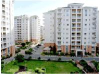 2 Bedroom Flat for rent in DLF Silver Oaks, DLF City Phase I, Gurgaon