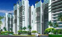 2 Bedroom Flat for sale in Supertech Livingston, Crossing Republik, Ghaziabad
