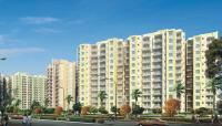 Orris Aster Court - Sector-85, Gurgaon