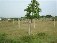 Land for sale in Manglam's Grand City, Ajmer Road area, Jaipur