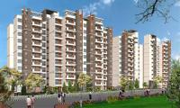 3 Bedroom Flat for rent in Sobha Primrose, Sarjapur Road area, Bangalore