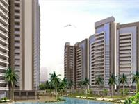 Tulip Orange - Sector-70, Gurgaon