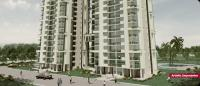 3 Bedroom Flat for rent in Princess Park Parklands, Sector 86, Faridabad