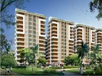 3 Bedroom Flat for sale in BeeGee Palm Village, Sector 126, Mohali