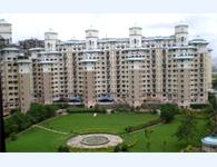 2 bhk flat for rent in Nri Complex ( Seewood estate ) in phase 2