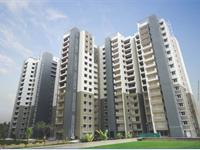 3 Bedroom Flat for rent in Sobha Elite, Nagasandra, Bangalore