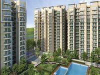 Omkar Royal Nest - Noida Extension, Greater Noida