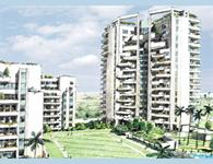 Silverglades The Ivy - Sushant Lok, Gurgaon