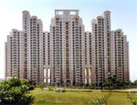 DLF Windsor Court - DLF City Phase IV, Gurgaon