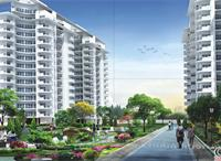 2 Bedroom Flat for sale in JNC Greenwoods, Sector 3, Ghaziabad