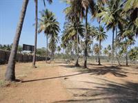 Sobha Garden - Bangalore-Mysore Road area, Mysore
