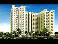 Alliance Galleria - Pallavaram, Chennai