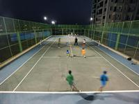 Playing Court
