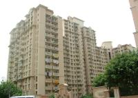 3 Bedroom Apartment For Rent In DLF Phase-V,Gurgaon.