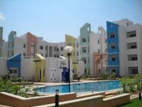 2 Bedroom Flat for rent in Prestige Palms, Whitefield, Bangalore