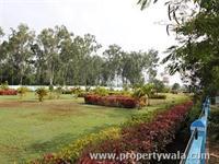 Park View-3