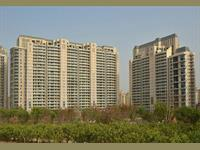 5 Bedroom Flat for rent in DLF Magnolias, Golf Course Road area, Gurgaon