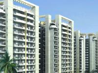 1 Bedroom Flat for rent in Bestech - Park View Residency, Sector-23, Gurgaon