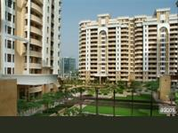 3 Bedroom Flat for rent in Vipul Orchid Belmonte, Sector-54, Gurgaon