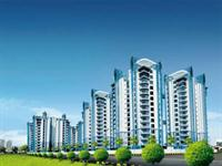 2 Bedroom Flat for sale in Amrapali Verona Heights, Noida Extension, Greater Noida
