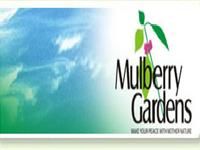 Mulberry Gardens Magarpatta City - Magarpatta, Pune