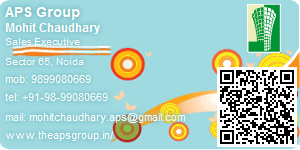Visiting Card of APS Group