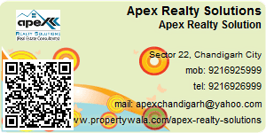 Apex Realty Solution - Visiting Card