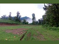 Residential Plot / Land for sale in Bhauwala, Dehradun
