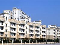 3 Bedroom Flat for sale in Ashiana Orchid, Sector Gamma-2, Greater Noida