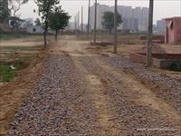 Agri Land for sale in Sri Sai Ram Puram, Bhopani Village, Faridabad