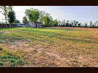 Agricultural Plot / Land for sale in Dhauj, Faridabad