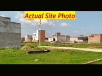 Site Images