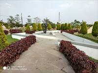 Residential Plot / Land for sale in Tigariya Badshah, Indore