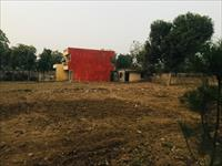 1 Bedroom Independent House for sale in Sector 21A, Faridabad